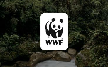 Samstarvið við WWF
