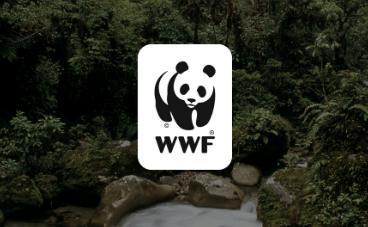 Samarbeid med WWF